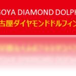 【17年度全チーム紹介】名古屋ダイヤモンドドルフィンズ【B1中地区】