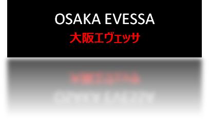 【17年度全チーム紹介】大阪エヴェッサ【B1西地区】